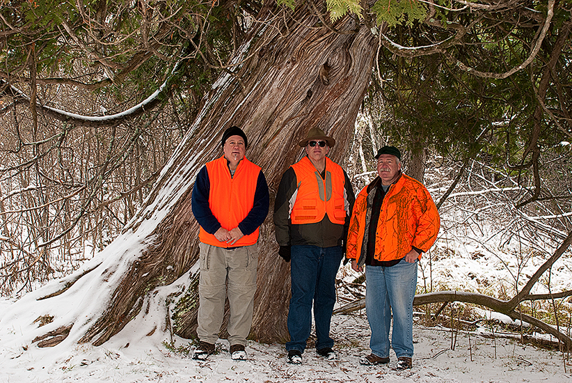 Dave, Don, and Bill at the tree